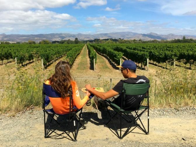 03 Vineyards Marlborough